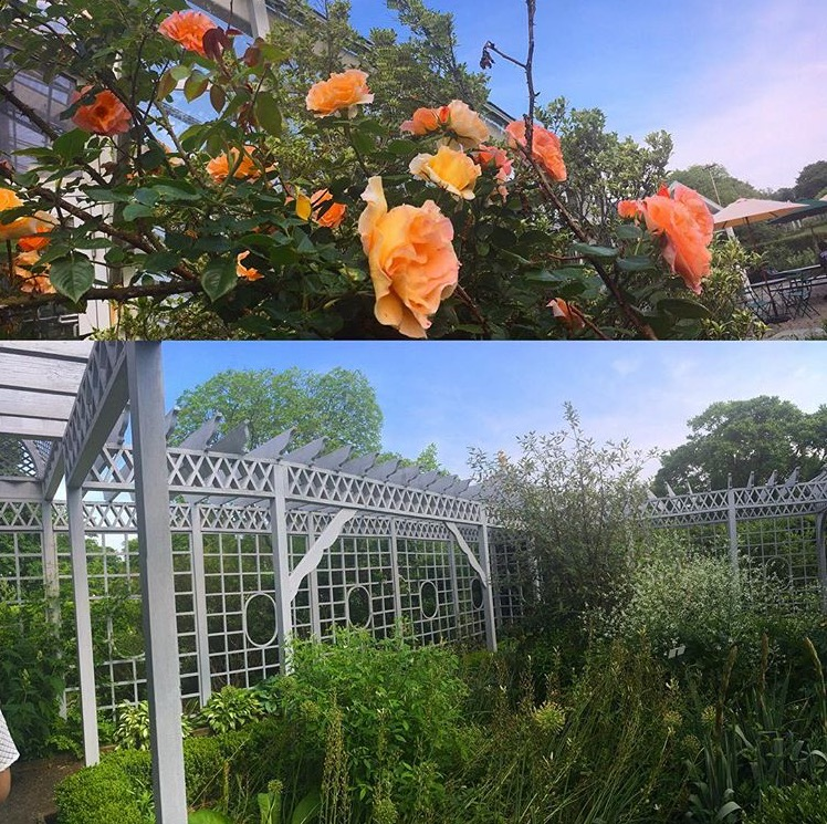 Staten Island Ny Snug Harbor Cultural Center And Botanical Garden From One Girl To One World